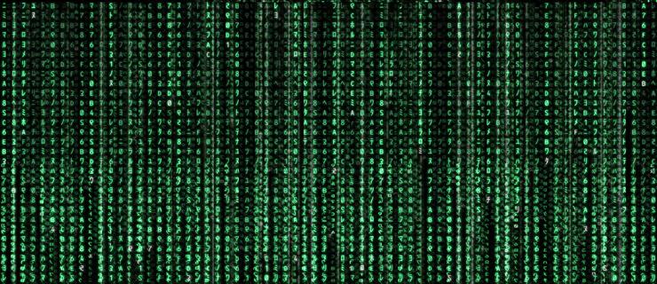 programadores web